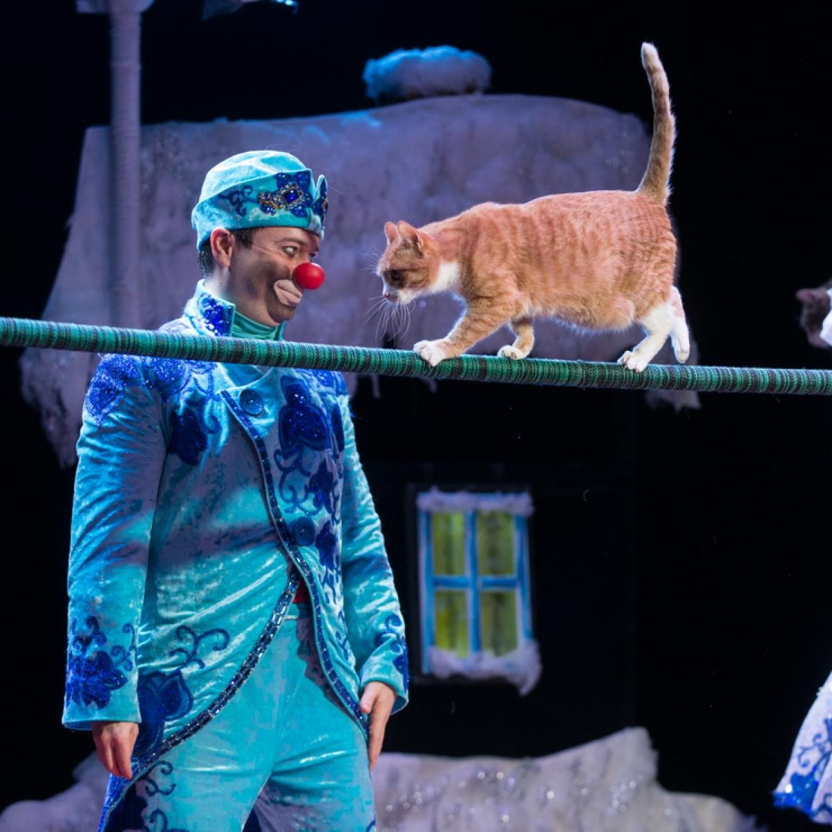 """Dmitrija Kuklačova kaķu izrāde """"Ziemas pasaka"""""""